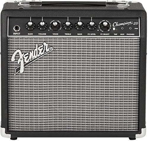 10 Best Acoustic Guitar Amps in 2019 [Buying Guide] - Music Critic