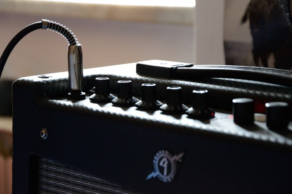 Microphone for Guitar Amplifier