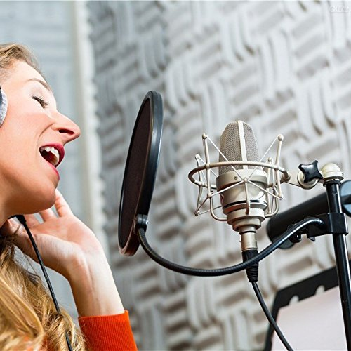 Women singing into pop filter and microphone