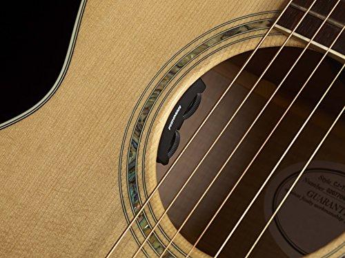 Fishman Matrix Infinity acoustic pickup