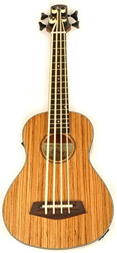 Hadean Acoustic Electric Bass Cut-Away